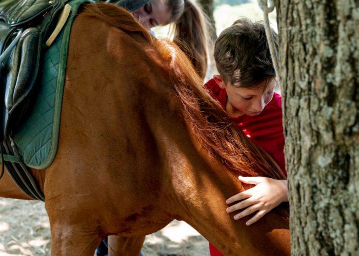 Colònies d'estiu amb cavalls.